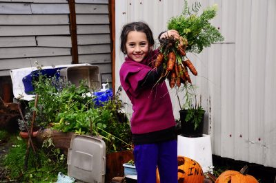 grow your own food, food sustainability
