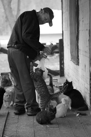 The Cat Man, Kentucky, cat house
