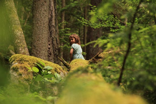 squamish bouldering, squamish forest
